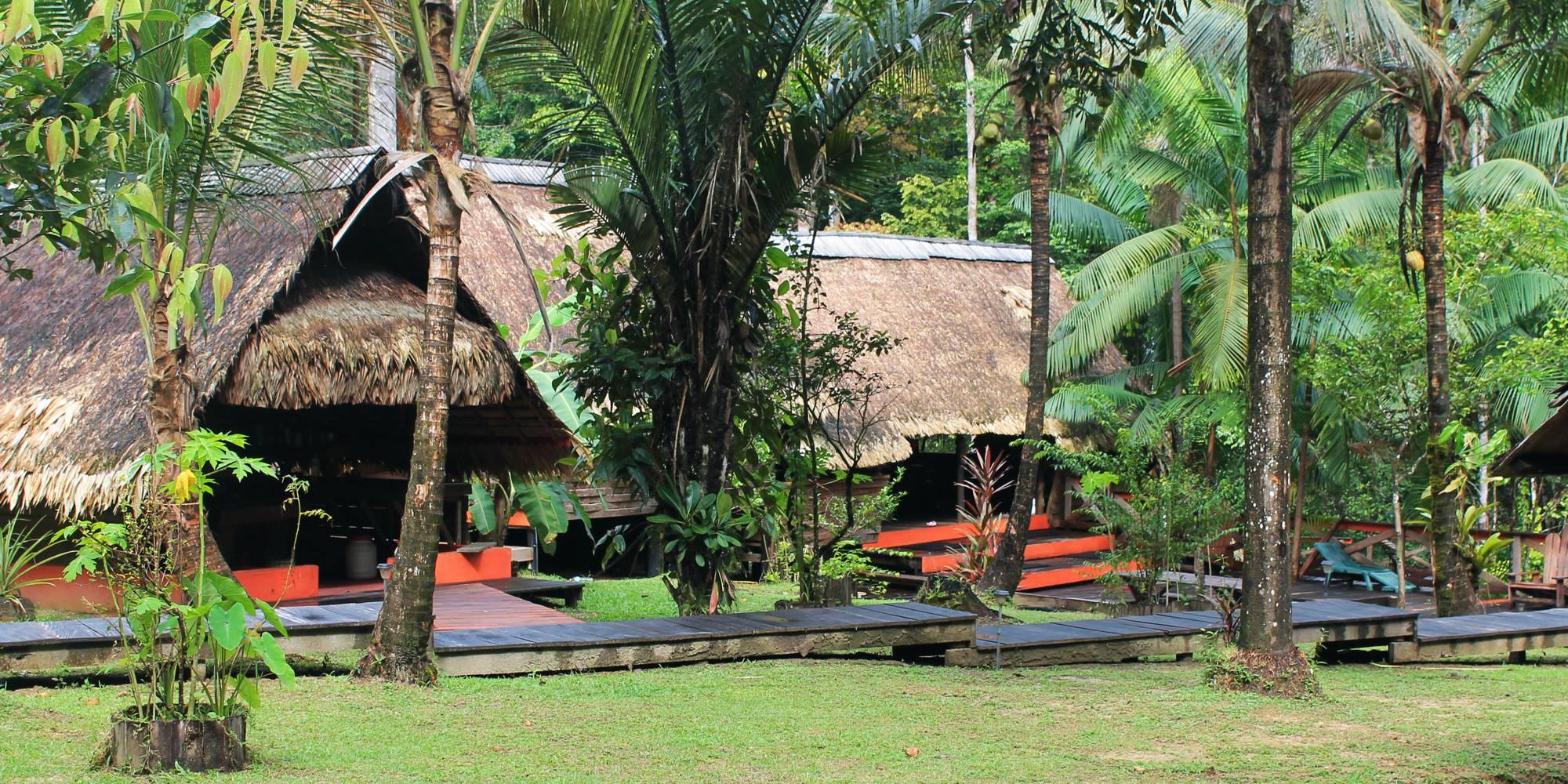 Cap sur le camp Cariacou avec Guyane Evasion