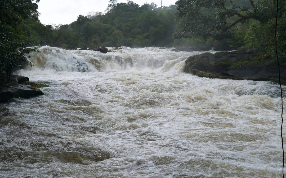 CAP SUR LE PLUS GRAND SAUT DE GUYANE : LE GRAND CANORI