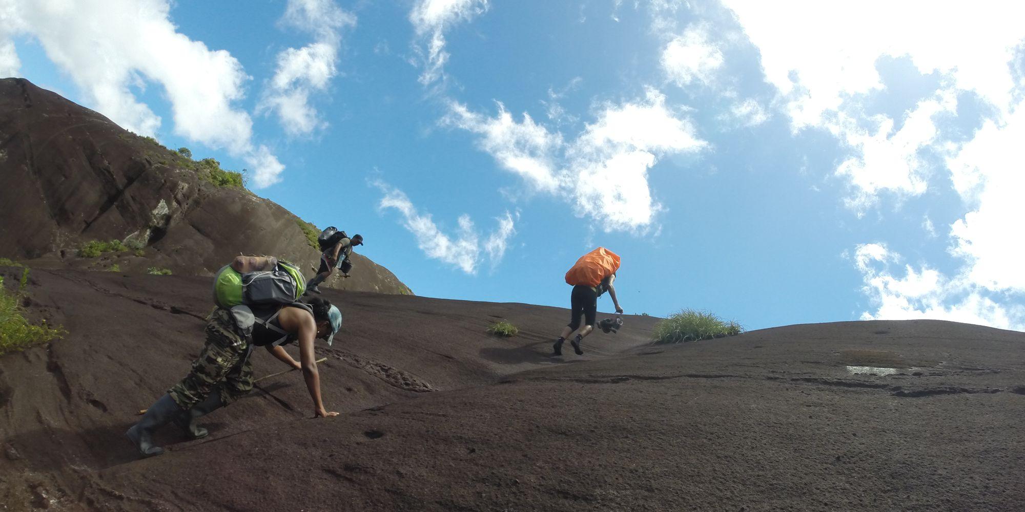 Cap sur le Mont Tumus Humac avec Guyane Evasion