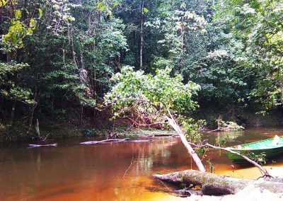 Cap sur le bagne des Anamites avec Guyane Evasion