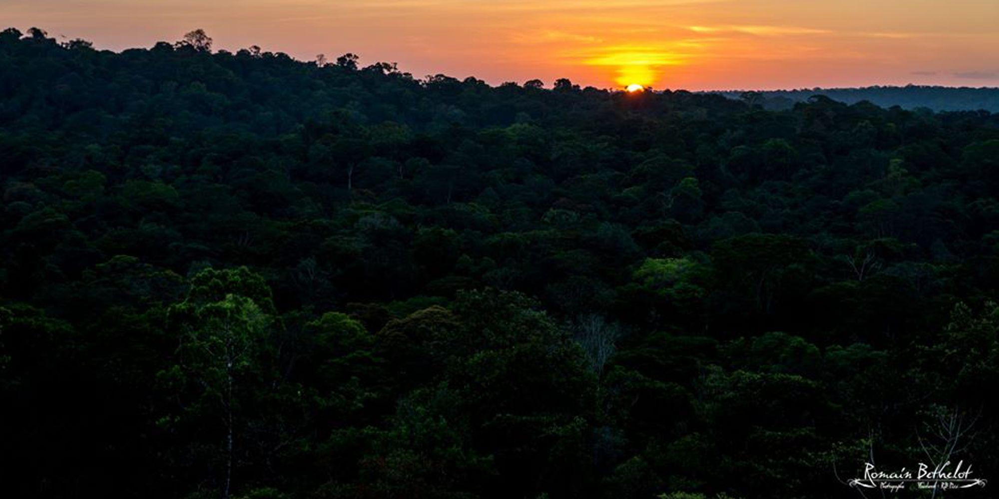 Cap sur l'Inselberg savane roche Virginie avec Guyane Evasion