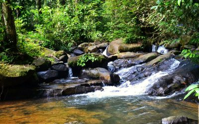 TRIP TO THE FOURGASSIE CASCADES